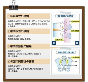 yotu_syurui.jpg