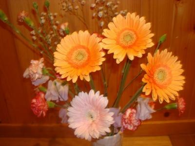 1月11日の花