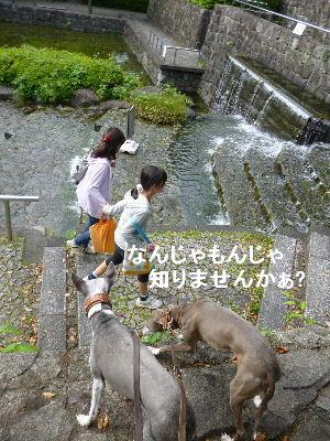 2012_05120034.jpg
