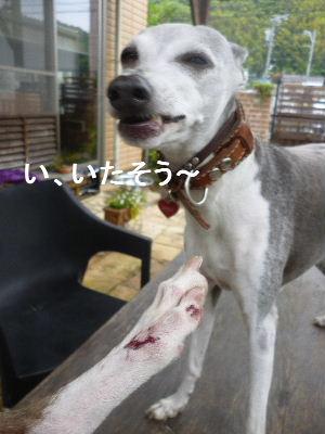 2012_06030013.jpg