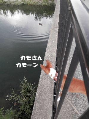 2012_09080035.jpg