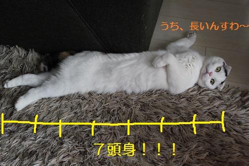 260209(3).jpg