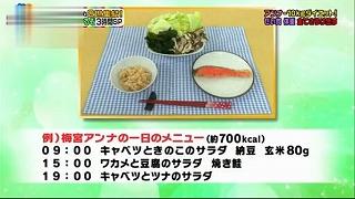 s-anna diet foods