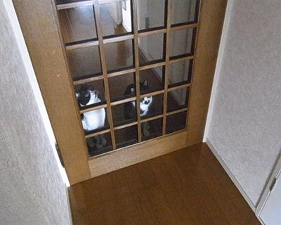 kenizumi9_R.jpg