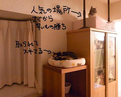 mikuhana2_R.jpg
