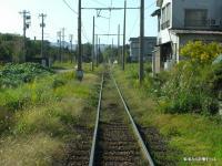 24-07-CIMG4246.jpg