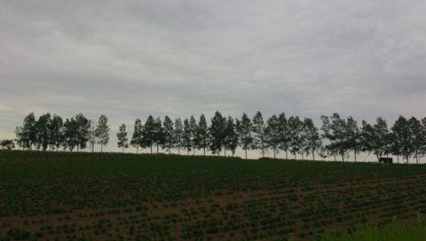 風景写真000_R