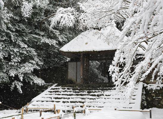 雪の法然院251