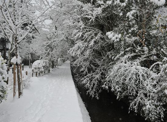 雪の哲学の路251