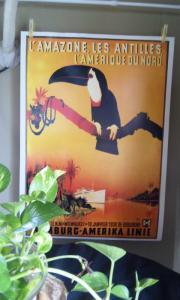 ジャングルとオウムのポスター