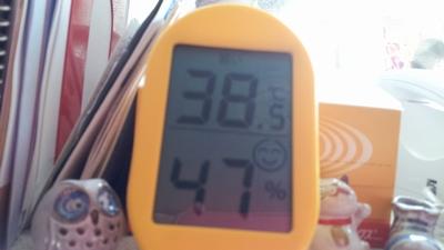 20130810_温度と湿度_400