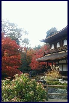 2014京都2