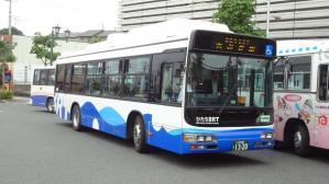 DSC08617.jpg