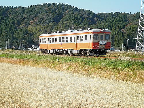 いすみ鉄道キハ52 125(2012年12月8日・西大原~上総東間)