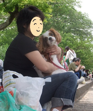 こいのぼり201234