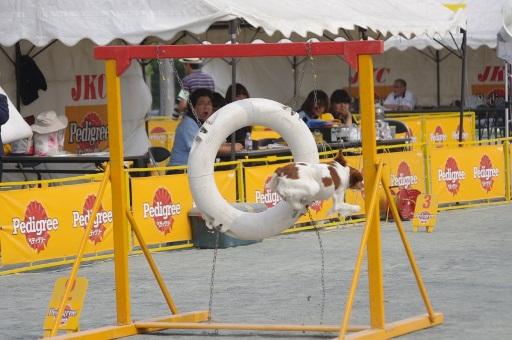 20120602東扇島006