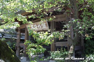10_20120729151457.jpg