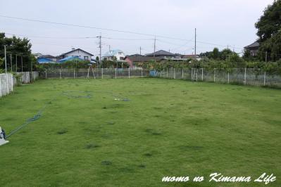 1_20120715163235.jpg