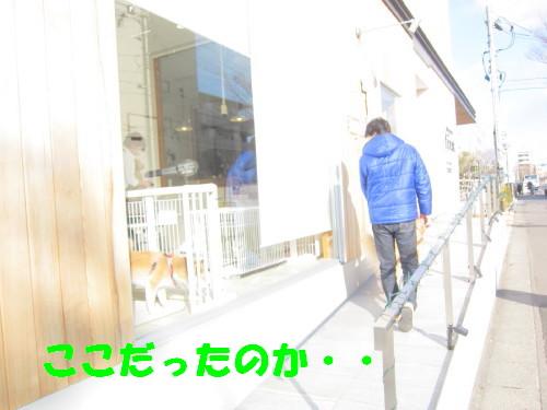 IMG_9346.jpg