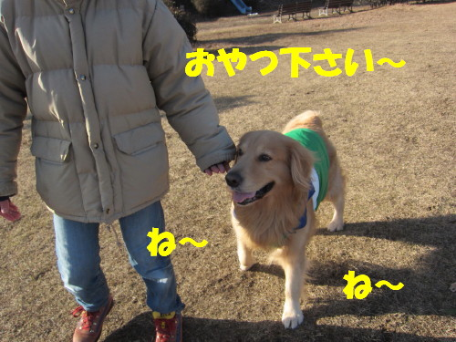 IMG_9450.jpg