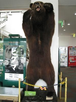 北海道11(サホロリゾート)