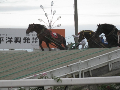 北海道17(ばんえい競馬)