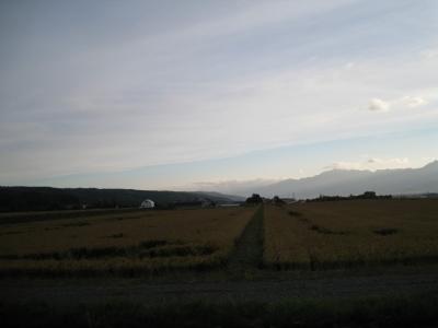 北海道6(北海道の畑)