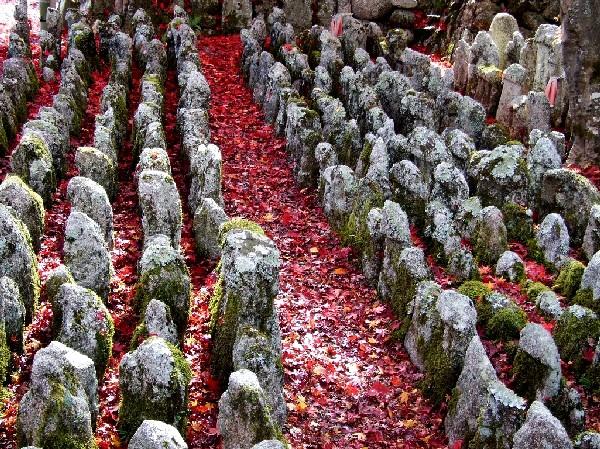 念仏寺0221bg