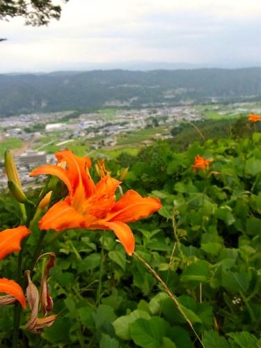 富士見城より