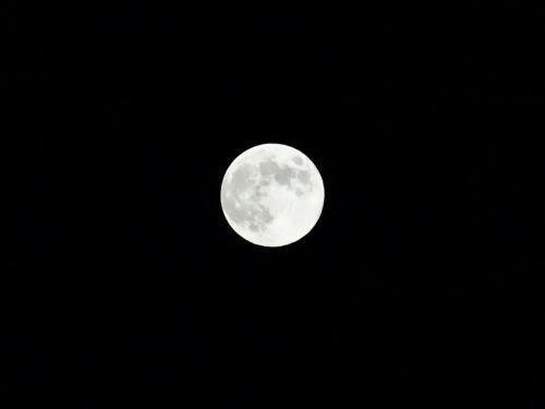 中秋の名月 (1200x900)