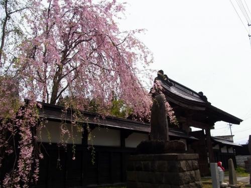 4天寧寺 (1200x900)