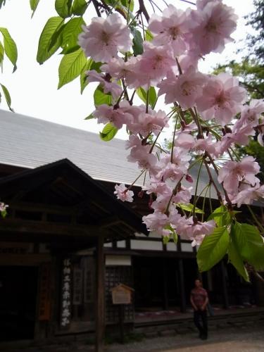 8角館武家屋敷 (900x1200)