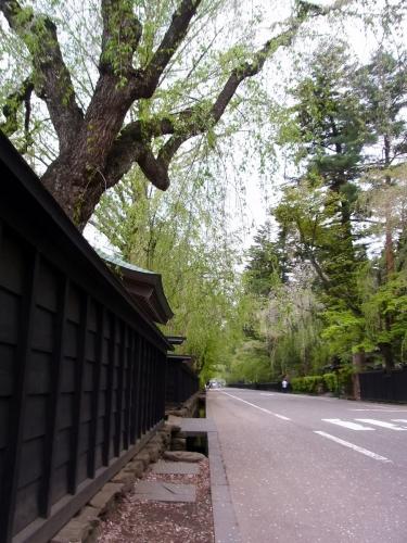3角館武家屋敷 (900x1200)