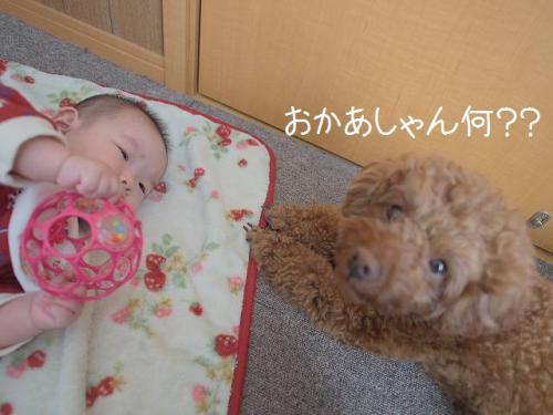 寝返り指導5