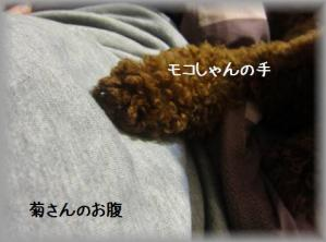 IMG_9857_20120426102432.jpg