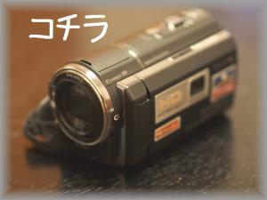P8088355.jpg