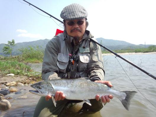 荒川サクラマス釣り 5月