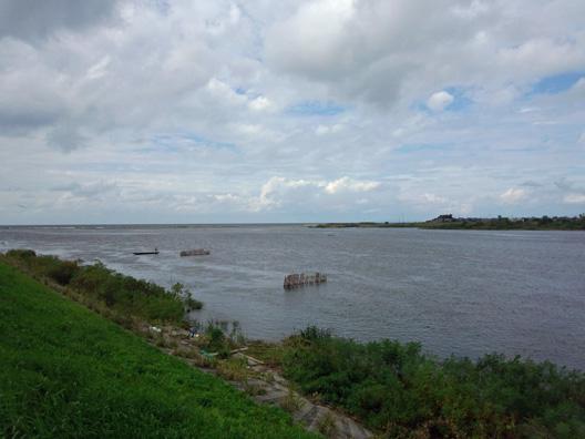 2012荒川漁業協同組合 鮭漁