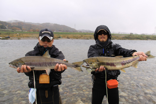 2012 荒川サケ有効利用釣獲調査 鮭釣り 11月12日