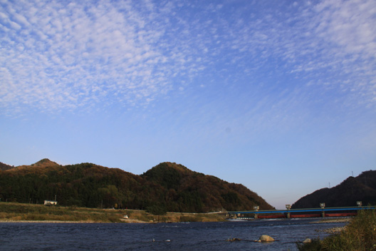 2012 荒川鮭(サケ)釣り 11月19日