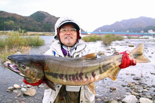 荒川鮭(サケ)釣り 11月21日
