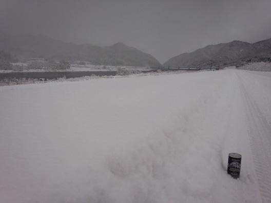 荒川鮭(サケ)釣り 12月9日