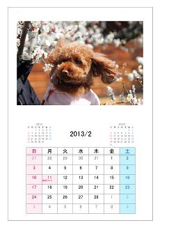 25カレンダー形式