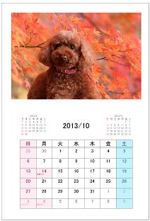 カレンダー形式10