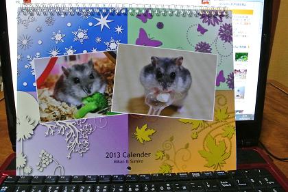 momi-san calendar
