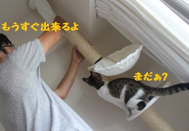 建設ちう②