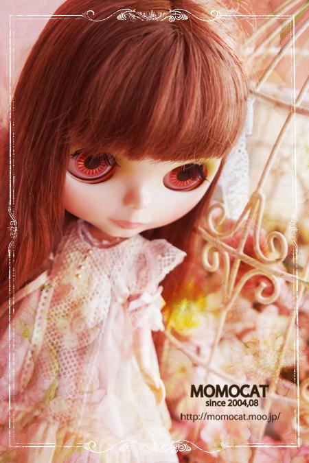 DSCF983492076.jpg