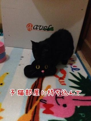 fc2blog_20140119221207961.jpg