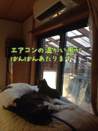 fc2blog_201401211603232ee.jpg