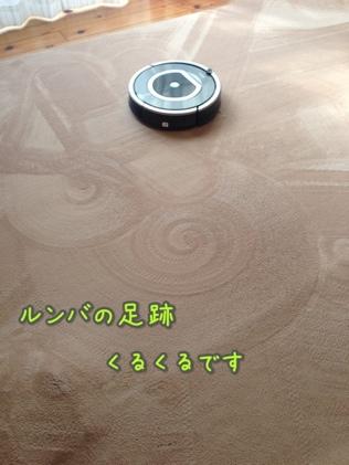 fc2blog_201401211615399e6.jpg
